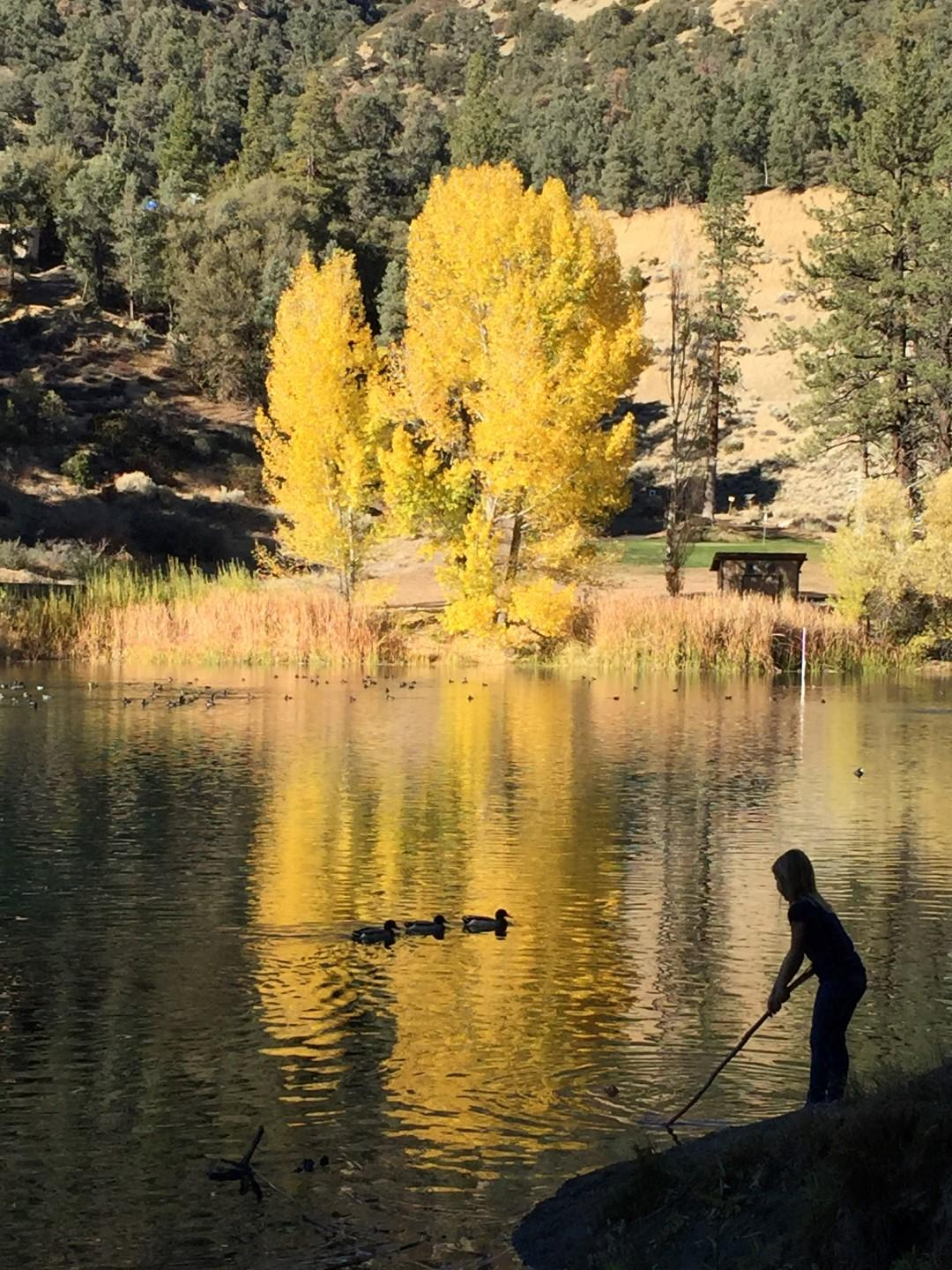 Fern's Lake / Fishing
